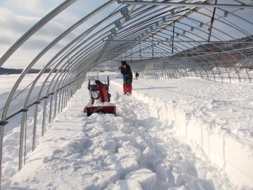 20130219_除雪中