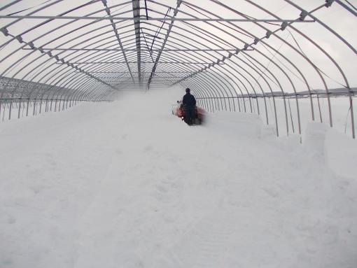 20130221_S岡さん除雪中