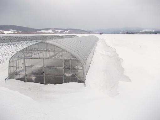 20130315_雪山より