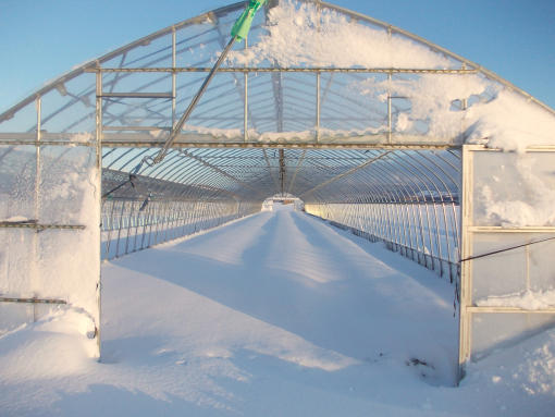 20131202_すっかり積雪
