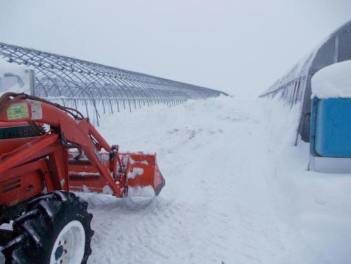 20140106_排雪中