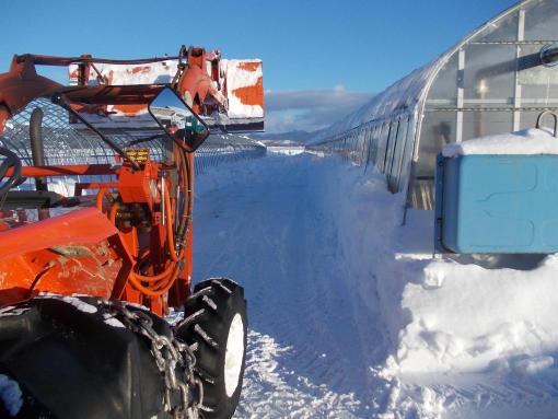 20140116_排雪中