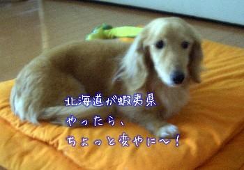 北海道が蝦夷県