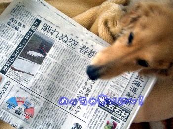 130503新聞