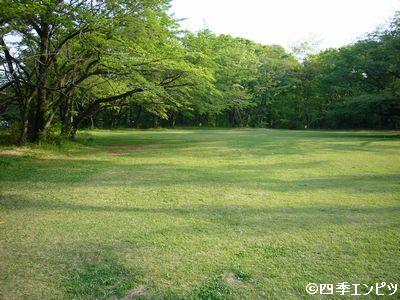 20130429 所沢航空公園 01