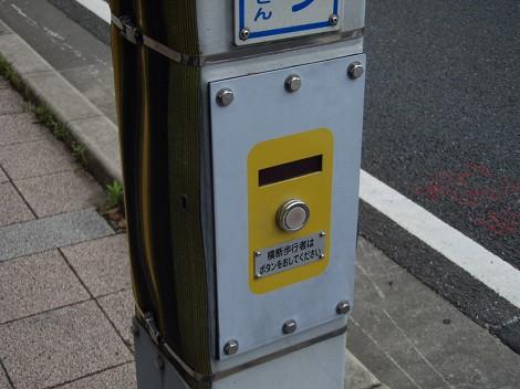 P5010008.jpg