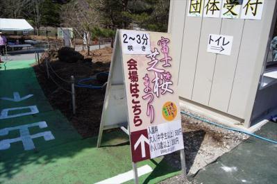 2013-04-13-004.jpg