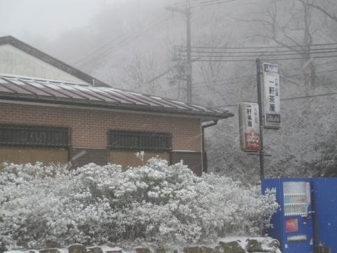 六甲山 009