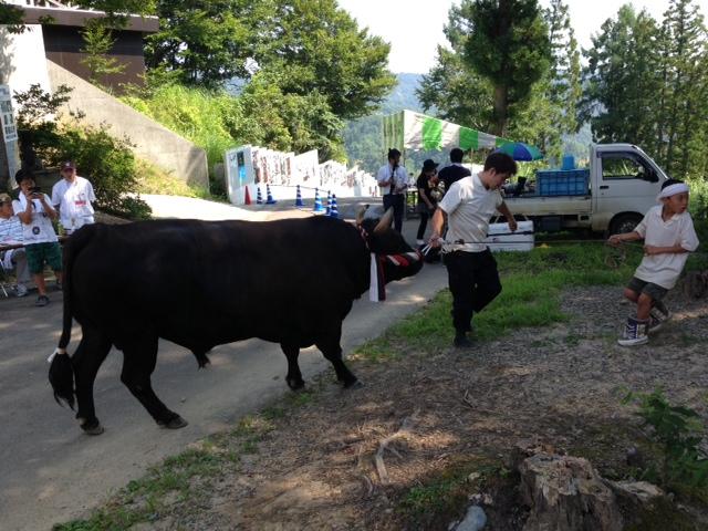 aki20130814-9.jpg