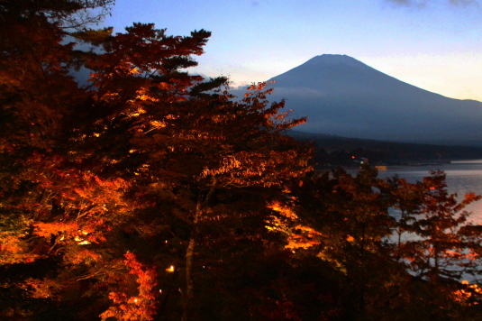 紅葉 山中湖 D 富士山と紅葉