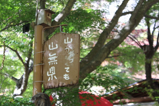 紅葉 昇仙峡 山無県