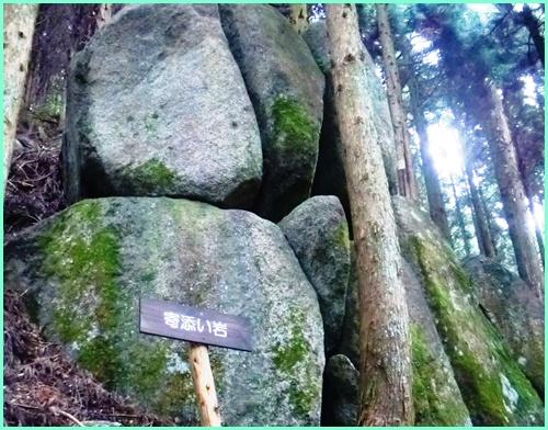005 寄添い岩