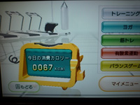 Wii Fit Plus 2013年09月21日のトレーニングのカロリー 67kcal