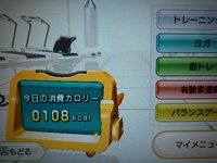 Wii Fit Plus 2013年09月23日のトレーニングの消費カロリー 108kcal