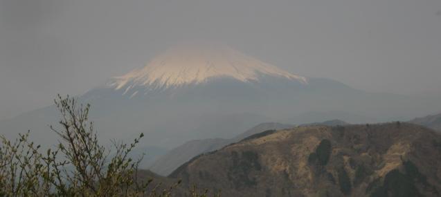 ooyama130429-104.jpg