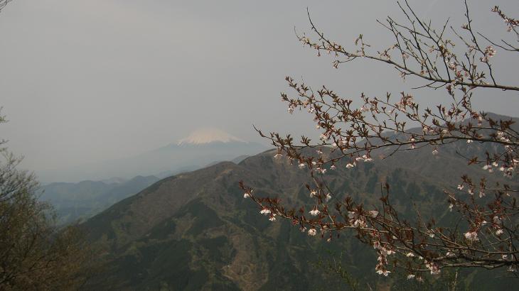 ooyama130429-106.jpg