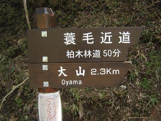 ooyama130429-205.jpg