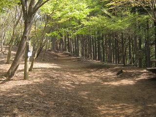 ooyama130429-213.jpg