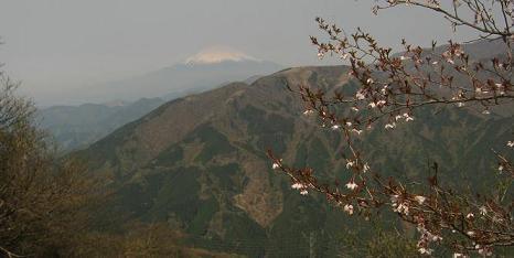 ooyama130429-223.jpg