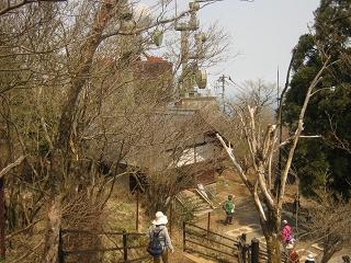 ooyama130429-237.jpg