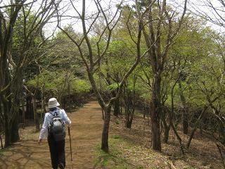 ooyama130429-241.jpg
