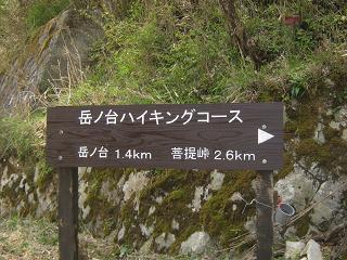 ooyama130429-249.jpg