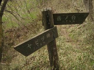 ooyama130429-259.jpg