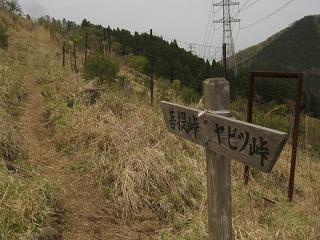 ooyama130429-261.jpg