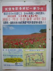 poppy130526-103.jpg