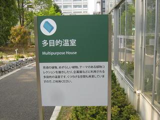 shokubutu130504-236.jpg