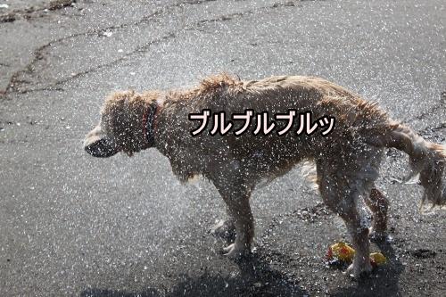 s-IMG_1507.jpg