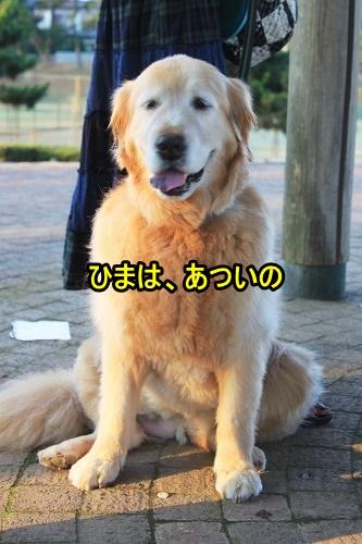 s-IMG_1932_20130709170115.jpg