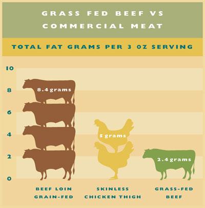 grain vs grass