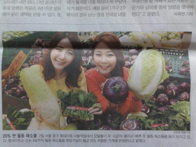 2014年1月 朝鮮日報 野菜とおねえさん
