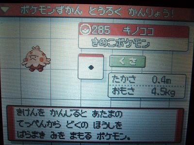 色 キノココ図鑑
