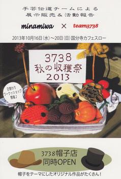 m_3738_2013.jpg