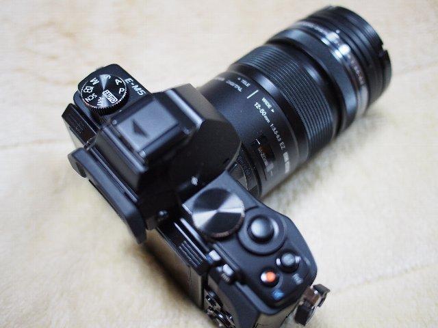 P2230110.jpg