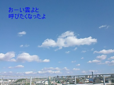 P1080352.jpg
