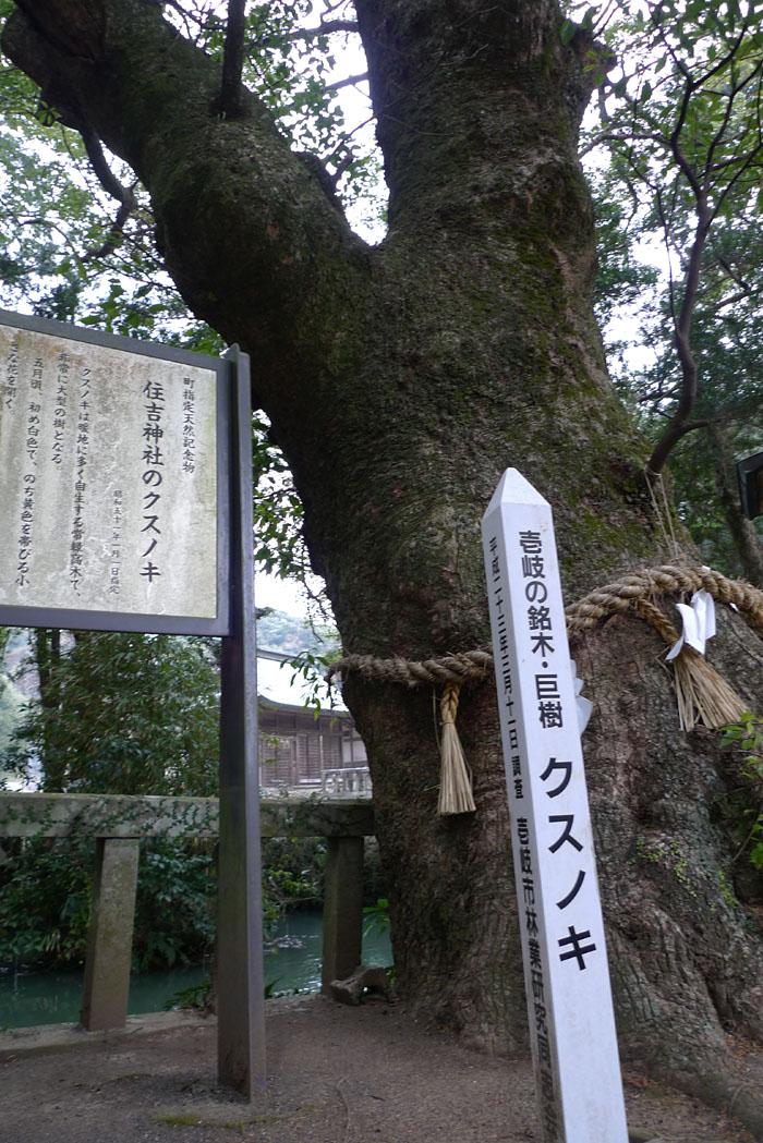 壱岐 住吉神社 8