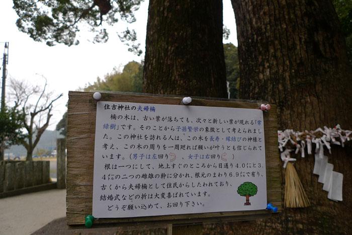 壱岐 住吉神社 14