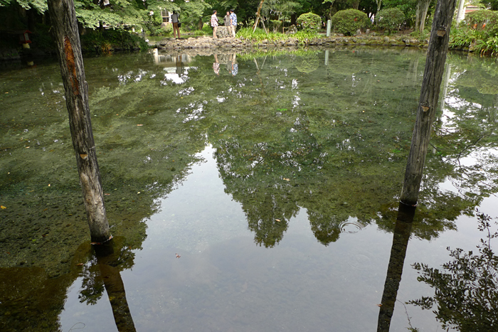 浅間大社 湧玉池 2013