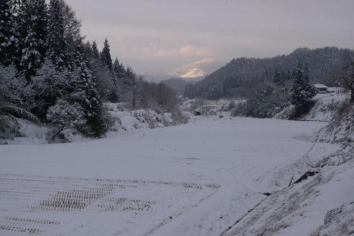 雪景色 2013 冬 1