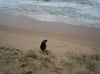 浜辺で調べる1