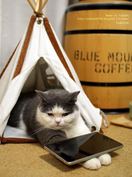のせ猫タブレット