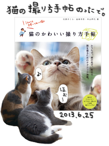 猫のかわいい撮り方手帖にのったで。