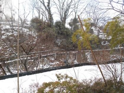 140116_雪景色