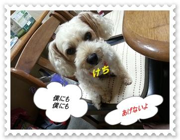 2013-08-06-20-18-01_photo_20130807005810182.jpg