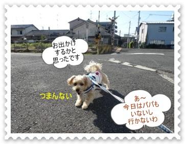 DSC01175.jpg