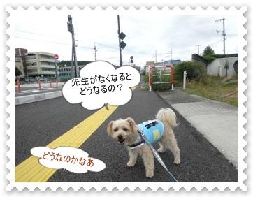 DSC01237.jpg