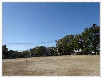DSC01262.jpg